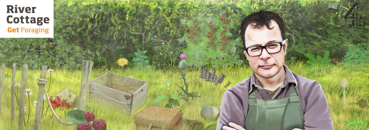 River Cottage Get Foraging in the Guardians top 20